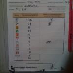 Elecciones 2009 Seccion 3116
